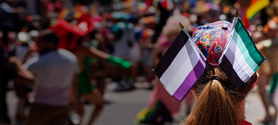 The back of the head a white person watching a pride parade. The person has a colorful hat and a ponytail holding small ace and aro flags.